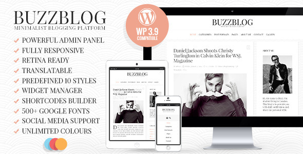 Live Preview of BuzzBlog - Clean & Personal WordPress Blog Theme