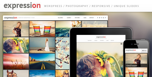 Live Preview of Expression Photography Responsive WordPress Theme