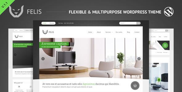 Live Preview of Felis - Flexible & Multipurpose Wordpress Theme