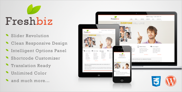 Live Preview of Freshbiz - Responsive Business WP Theme