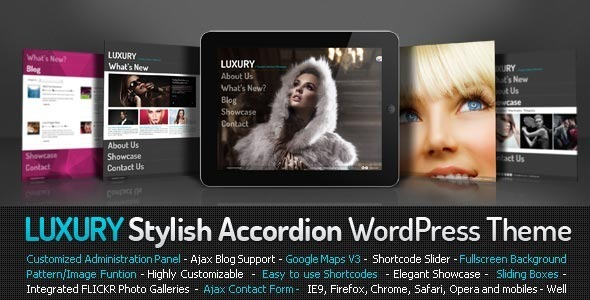 Live Preview of Luxury Stylish Accordion Wordpress Theme