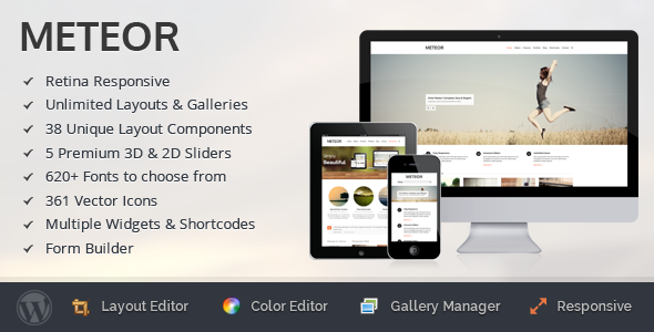 Live Preview of Meteor - Retina Responsive WordPress Theme