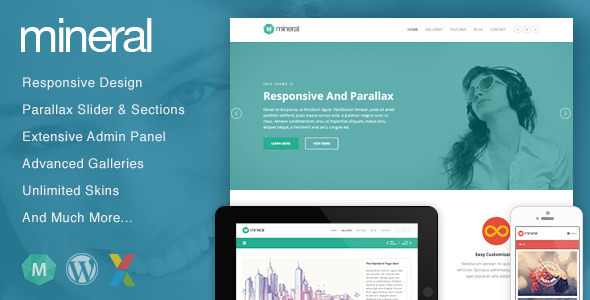 Live Preview of Mineral - Responsive Multi-Purpose WordPress Theme