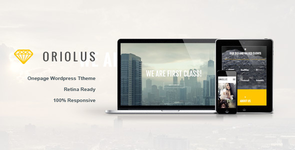 Live Preview of Oriolus -  Responsive Onepage WordPress Theme