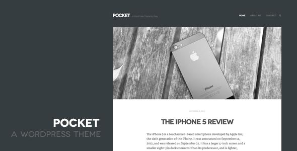 Live Preview of Pocket WordPress Theme