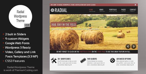 Live Preview of Radial - Creative Blog & Portfolio Wordpress Theme