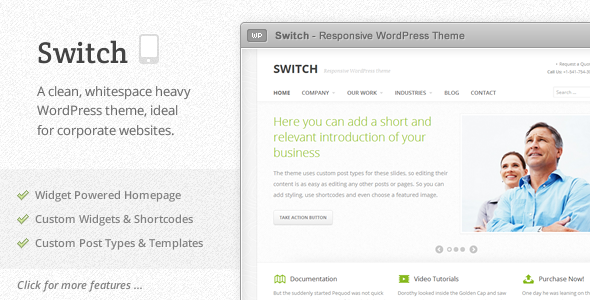 Live Preview of Switch - Responsive WordPress Theme