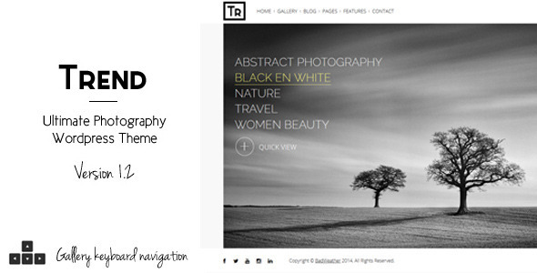 Live Preview of Trend - Photography WordPress Theme