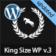 http://www.webwobble.com/themes/thumbnail-of-King-Size-fullscreen-background-WordPress-theme.png