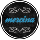 http://www.webwobble.com/themes/thumbnail-of-Mercina-WPress-Theme.png