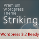Thumbnail of Striking Premium Corporate & Portfolio WP Theme